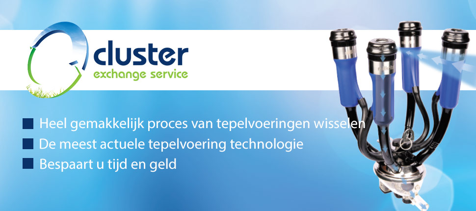 cluster exchange nl